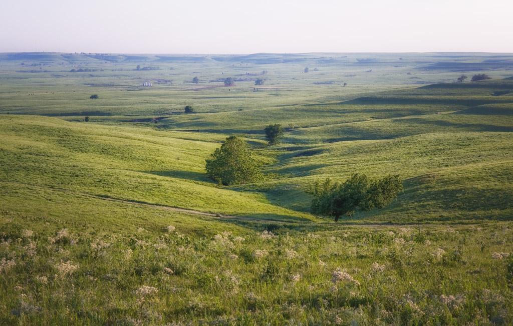 Greenwood County Overlook