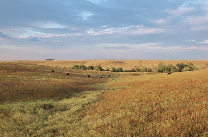 Evening Landscape – Morris County