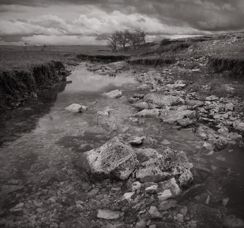 Rain Drenched Ravine