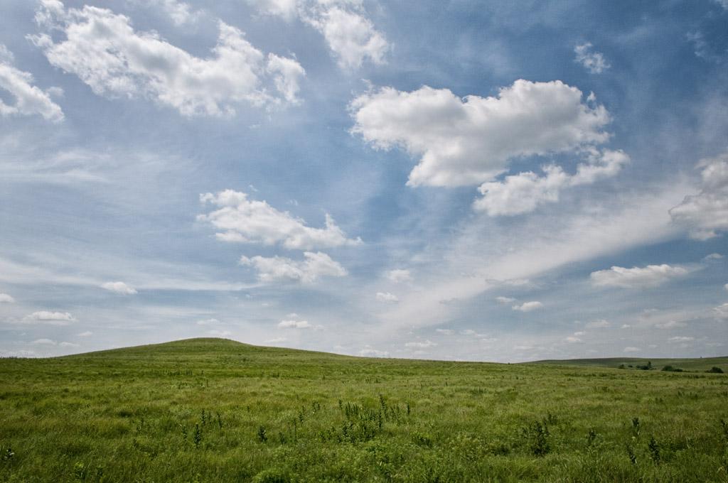 Where Clouds are Born