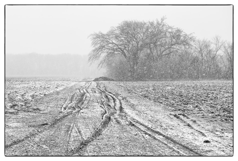 Dirt Field Road – Winter