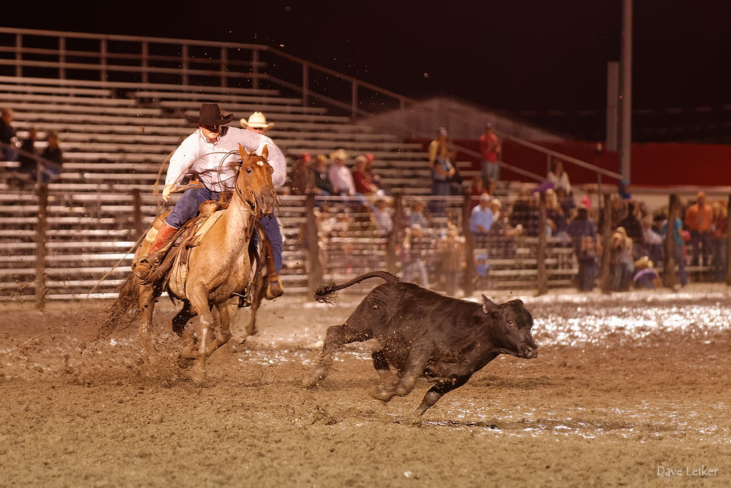 Rodeo in the Mud #3