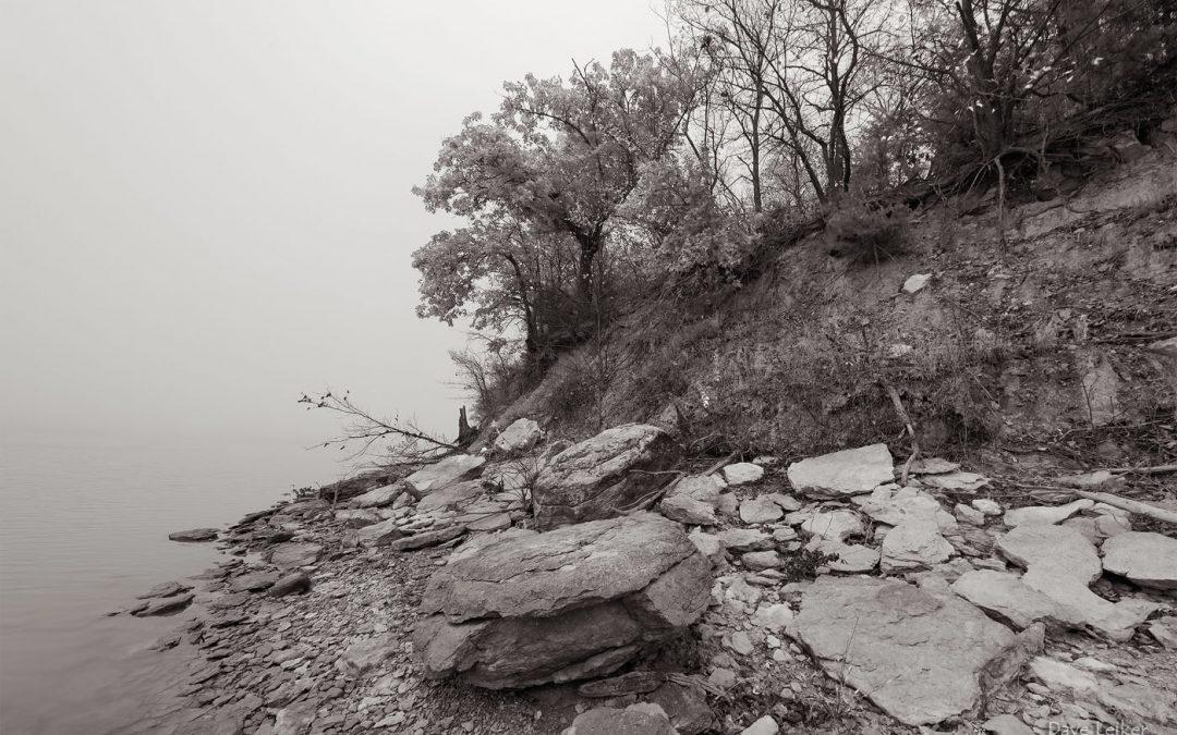 Stoney Shoreline