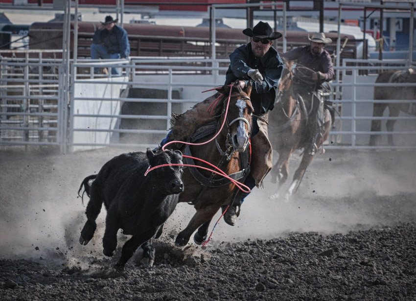 Ranch Rodeo #2274