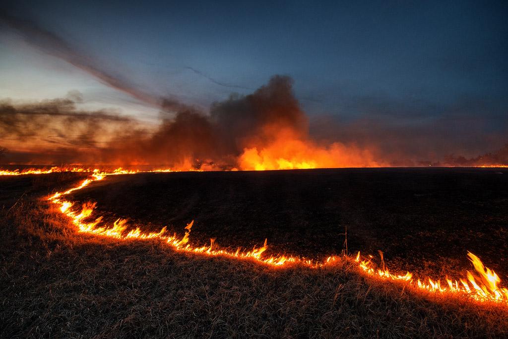 Prairie Burn #2135