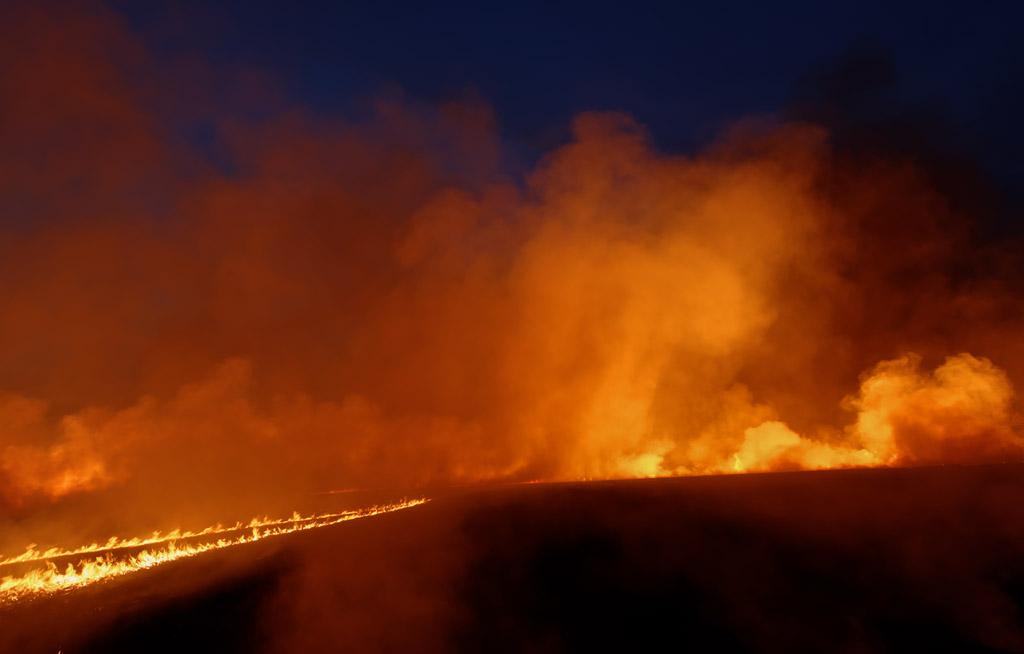 Burn #2213