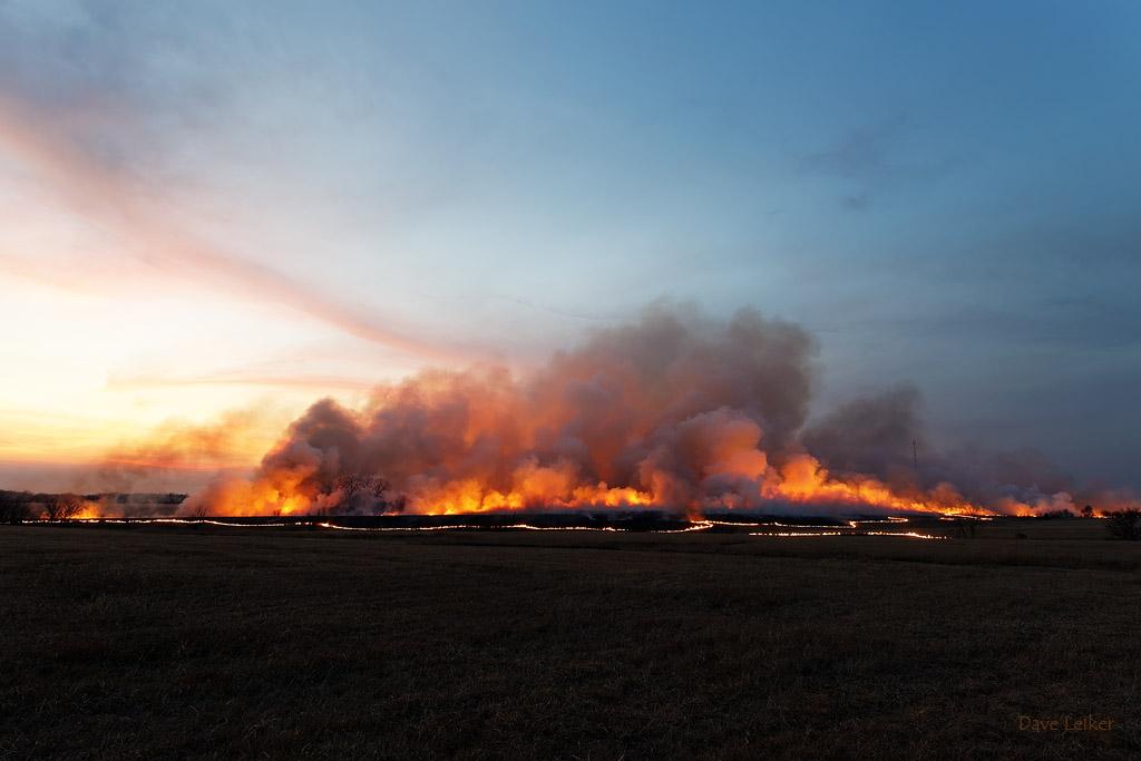 Prairie Burn #2093