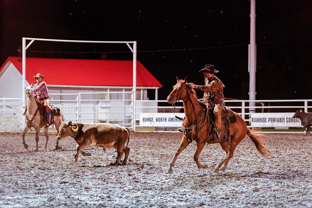 Rodeo in the Mud #1