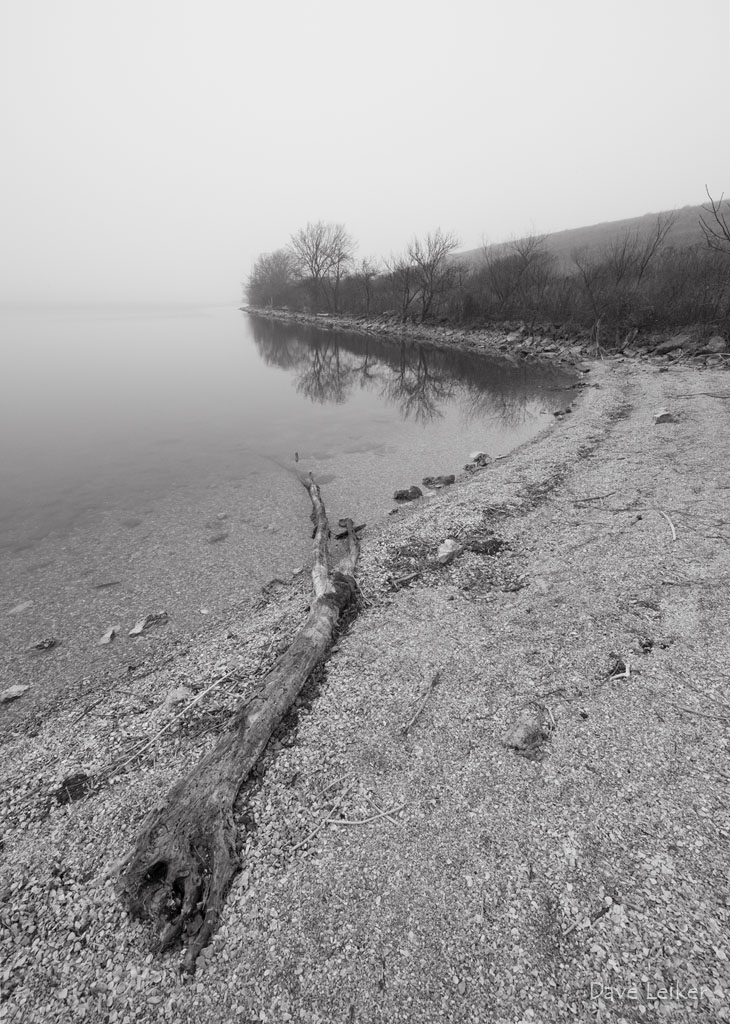 Chase Lake Shoreline, Foggy Morning