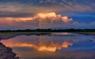 Storm clouds reflected in a flooded field