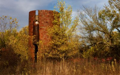 Old silo among autumn trees and grasses
