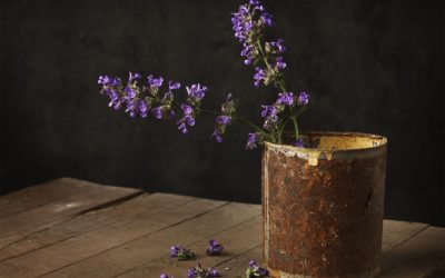 Violet flowers in rusted tin can