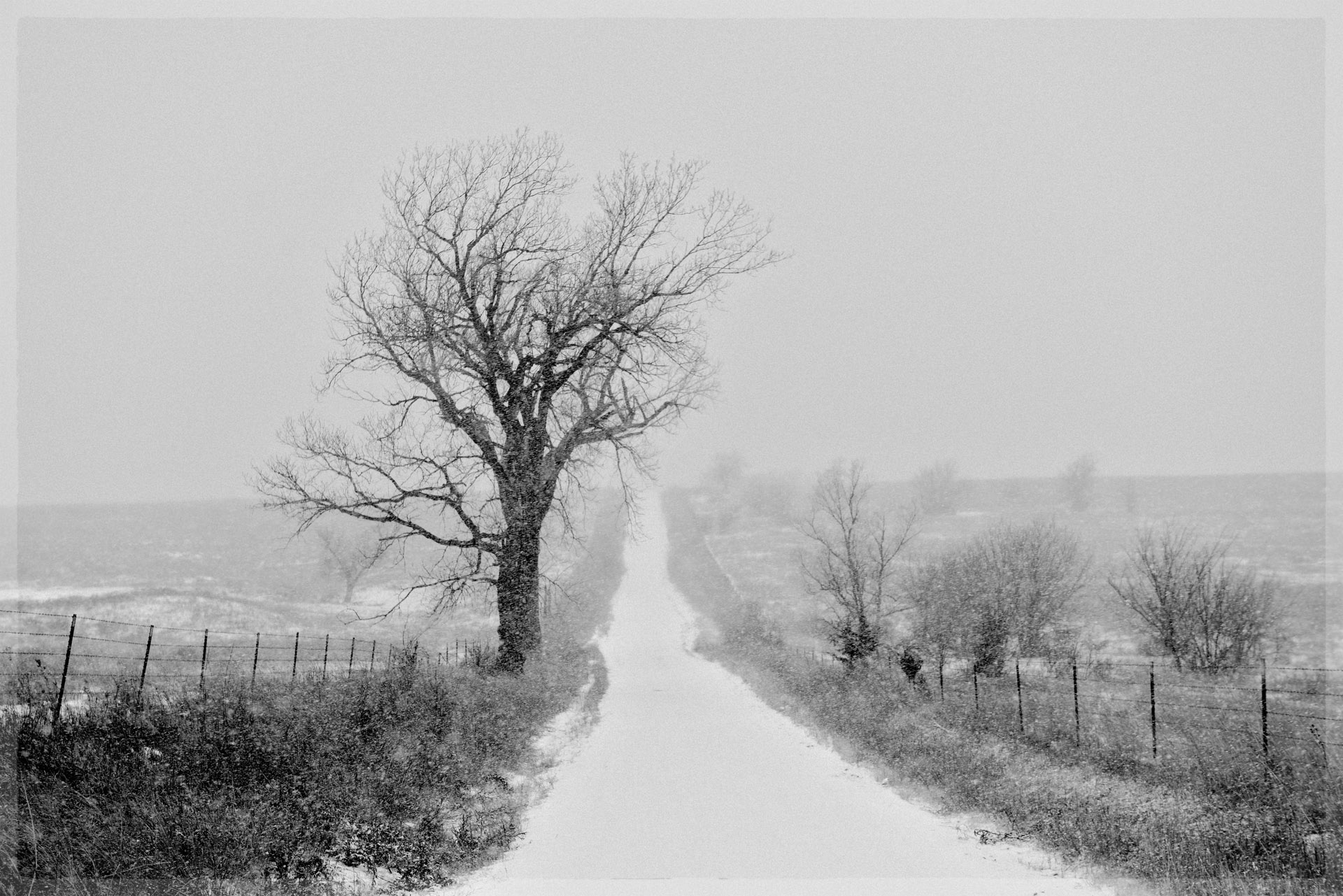 Road 90 in Winter
